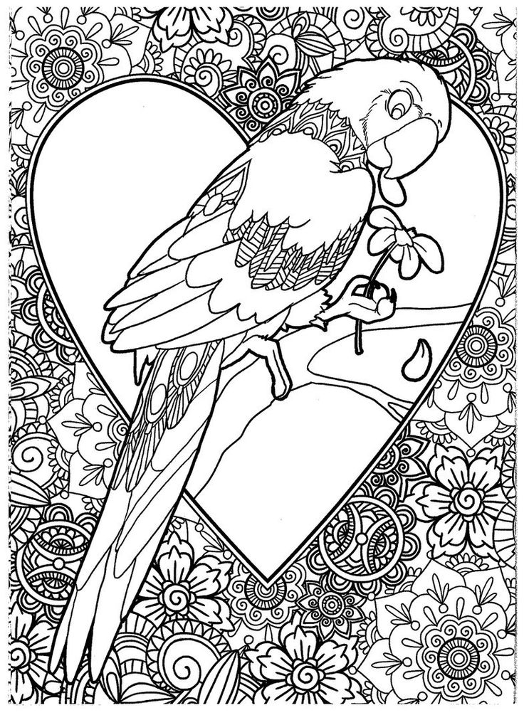 724 best COLOR-BIRDS images on Pinterest | Coloring books ...