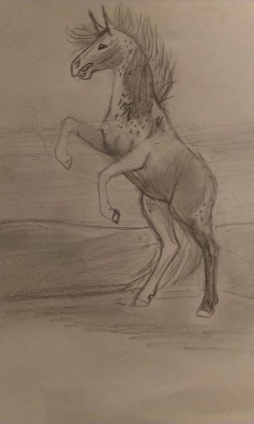 #my art #rearing horse #K.R.