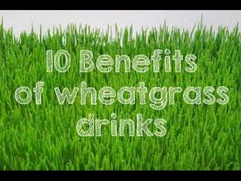 Incredible Skin And Oral Care Benefits Of Wheatgrass. Incredible Skin And Oral Care Benefits Of Wheatgrass  Wheatgrass is all the rage nowadays and its no wonder is we consider its nutritional profile. Its a young wheat plant harvested before the wheat kernel grows and its packed with all the essential nutrients. The best thing is that you can find it in every online shop healthy food store and café bar. Lets see whats so good about this amazing plant. Nutritional Content of Wheatgrass Its…