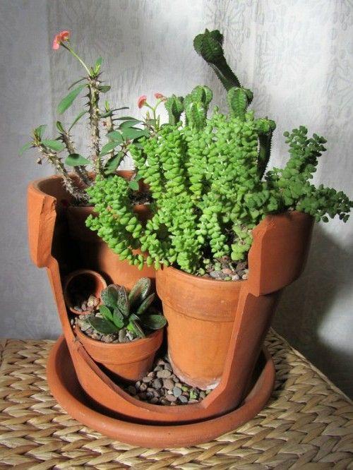 Best 25 small flower pots ideas on pinterest front door for Small flower pot ideas