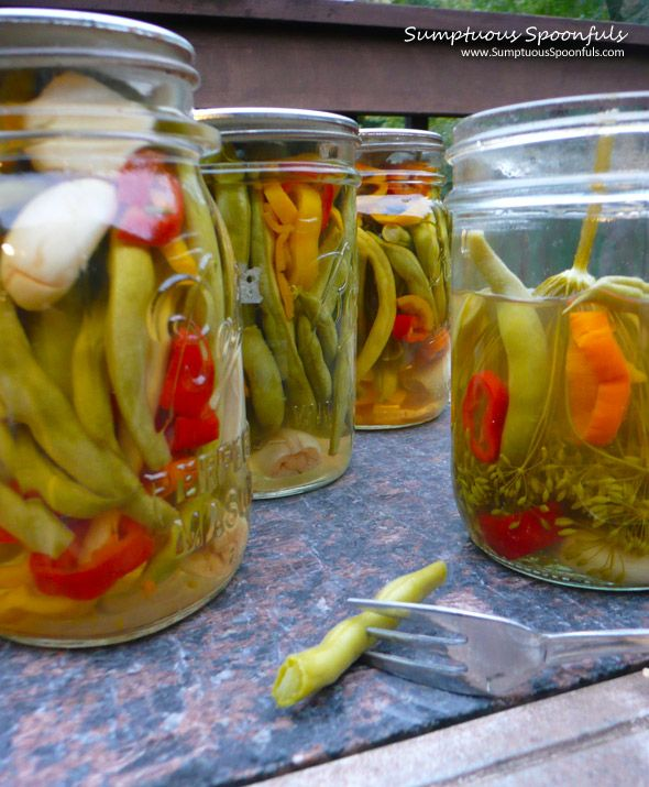 Crisp & Spicy Pickled Green Beans ~ Sumptuous Spoonfuls #pickle #recipe