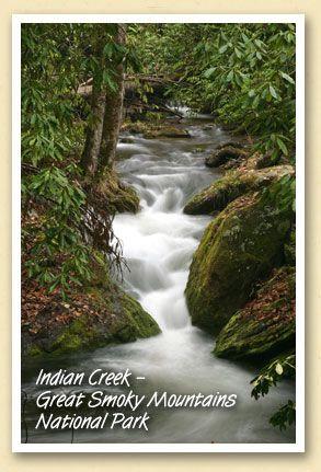 Indian Creek - Great #Smoky #Mountains National Park