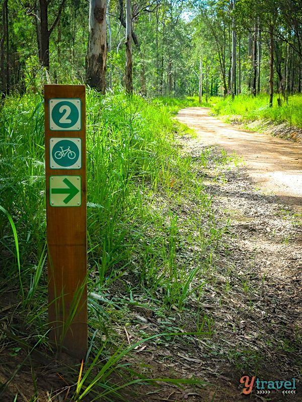 Mountain Biking trails in Atherton Tablelands, Queensland, Australia