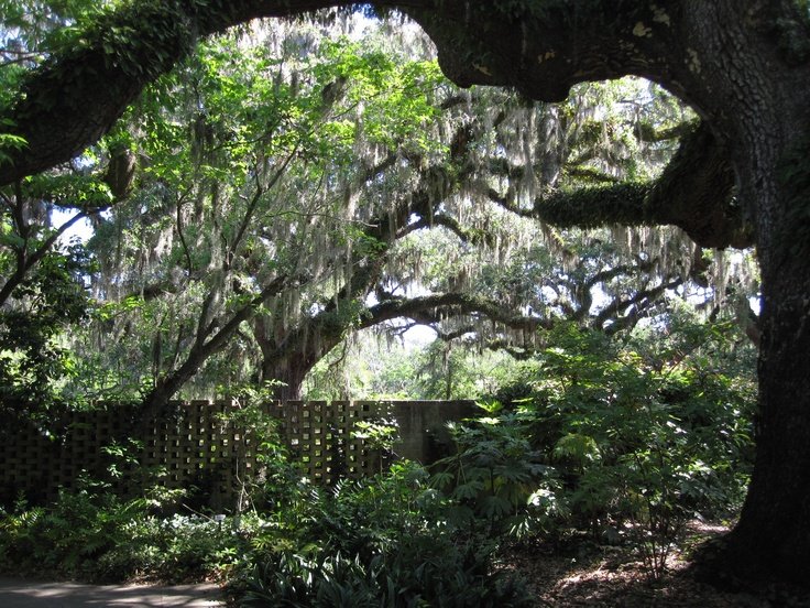 67 Best Images About Brookgreen Gardens On Pinterest Gardens Myrtle Beach Sc And Donkeys