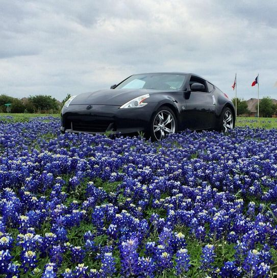 I love you, I love you not. I love you, I love you not. Who are we kidding? Of course we love the Nissan 370Z!