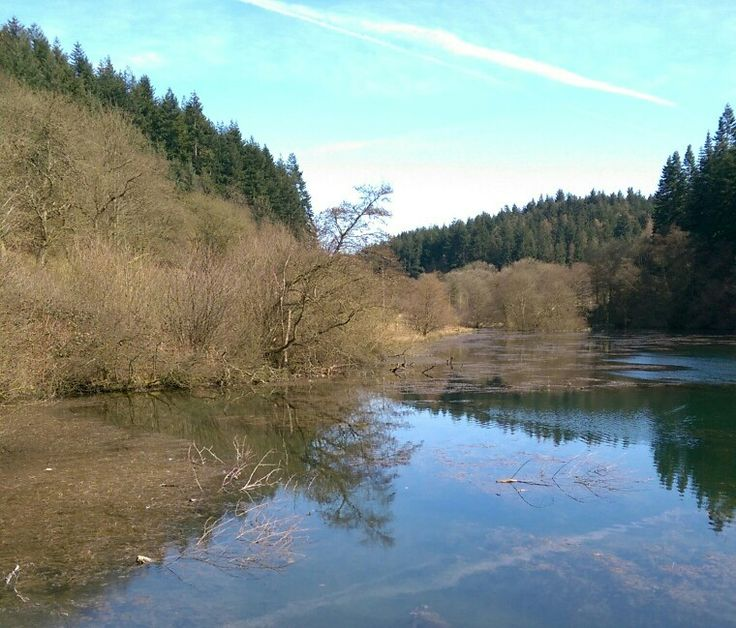 Dalby forest. Staindale lake beautiful place we visited at easter