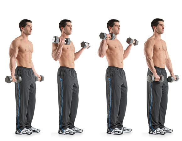 The 23 Best Biceps Exercises - more to try tho most I know