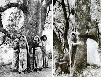 Chipko women - the original tree-hugger