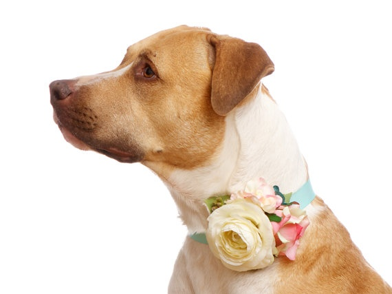 Best 25+ Small Elegant Wedding Ideas On Pinterest