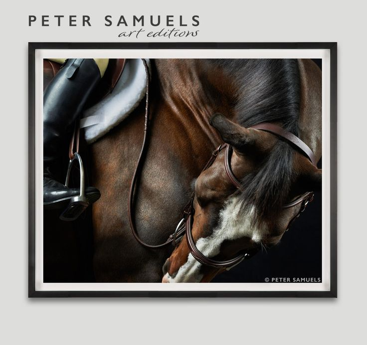 9 best PS Art Editions : Framed Horse Art Photography images on ...