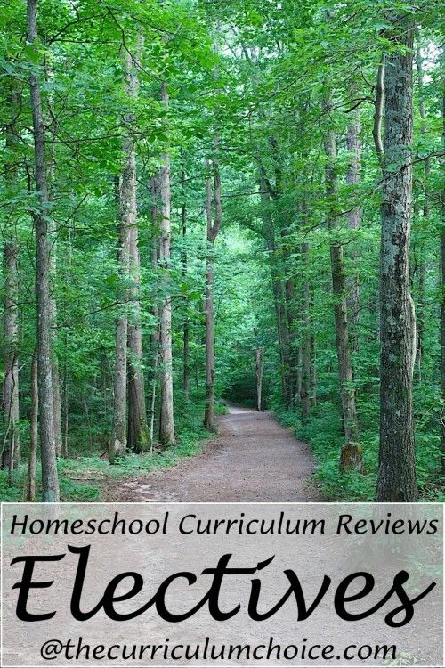 Homeschool Curriculum Reviews for Electives (with art curriculum giveaway!)
