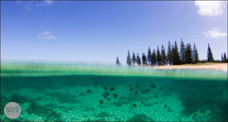 Norfolk Island is so beautiful and safe - perfect for taking kids on holidays.