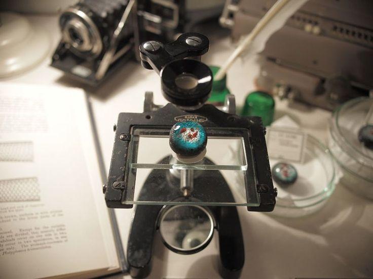 Недавно мне попались работы японского мастера Gen Masunaga в технике лэмпворк. Сказать, что я была поражена, это значит ничего не сказать. Он создает прекрасные бусины, в каждой из которых заключен целый мир. Рыбки и кораллы, медузы, грибы, тритоны.. И все это заключено в небольшой сфере диаметром 3 - 5 сантиметров. Эти удивительные вещи создает доктор философии и художник Gen Masunaga (Япония, Окинава).