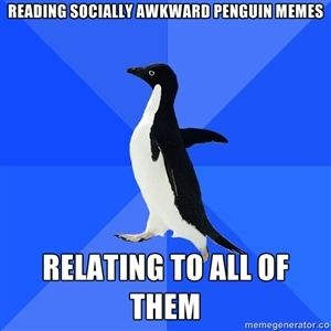 Socially Awkward Penguin...should probably stop looking at them...