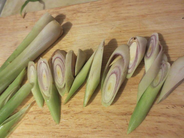 Plutôt que de gaspiller des restes de légumes et de plantes dont vous n'avez plus besoin, pourquoi ne pas les faire repousser? Voici10 plantes et légumes que vous pouvez replanter indéfiniment! 1. Pommes de terre et patates douces Coupez les pommes de terre en morceaux relativement gros avant de les plonger à moitié dans de …
