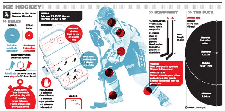 Winter Olympics sports guide infographic