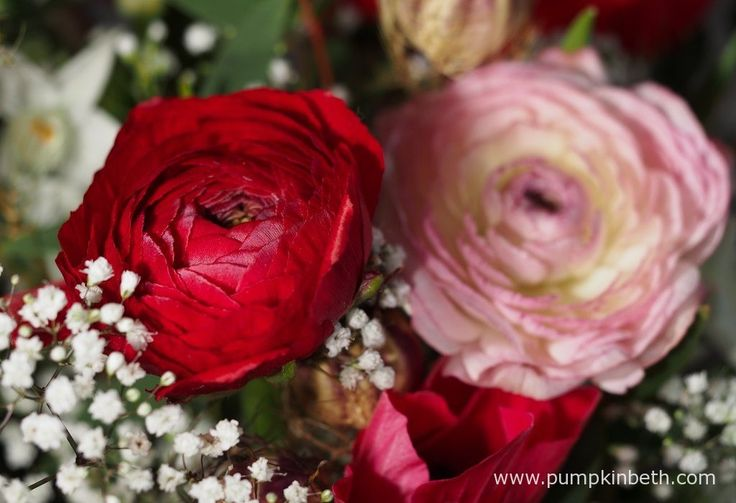Red and pink Ranunculus from The Great British Florist. These flowers were photographed on the 19th January 2017.