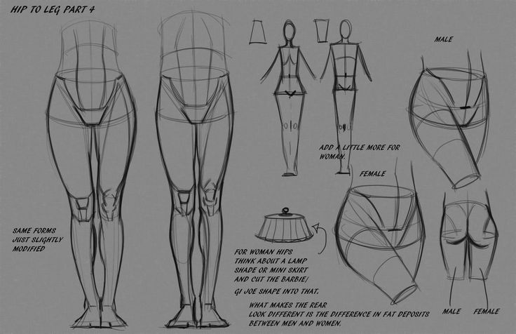 Leg Hip Notes P4 by FUNKYMONKEY1945 on deviantART via PinCG.com