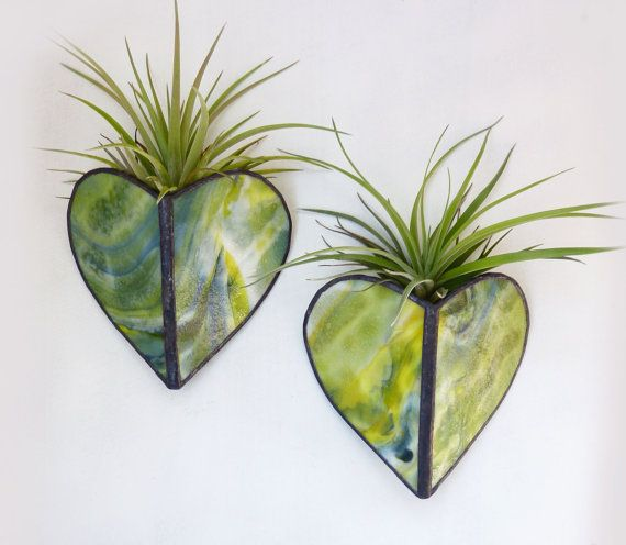 Stained glass Sconce -Air Plant Holder - Madrigal Duo:  Very, very cool and unique and pretty too!