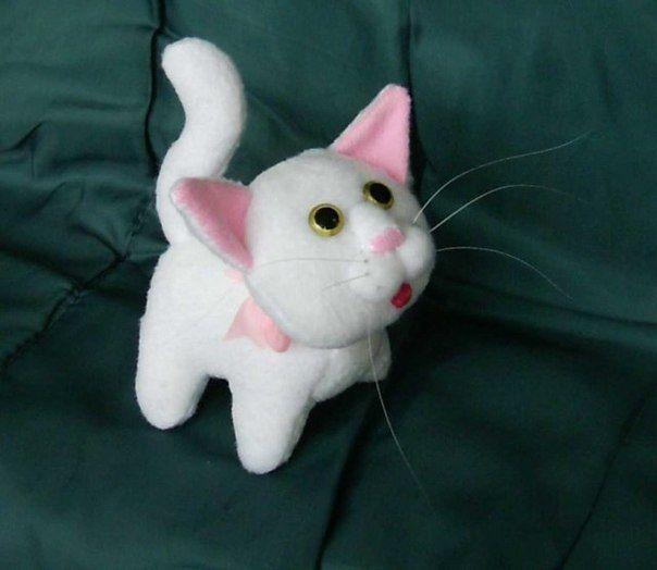 gatti con cartamodello