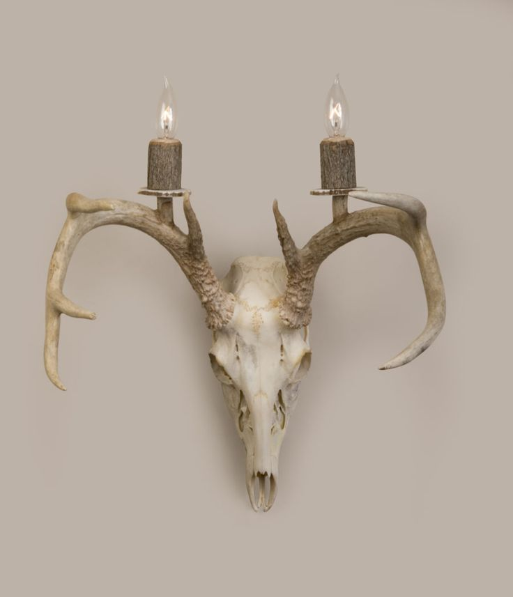 Awesome Skull Lamp