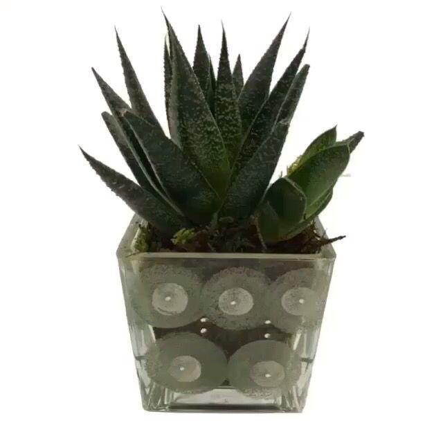 Handpainted glass vase  fletia.gr