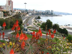 Viña del Mar and Valparaíso, the Twin Cities of the Chilean Coast #studyabroad #travel #chile