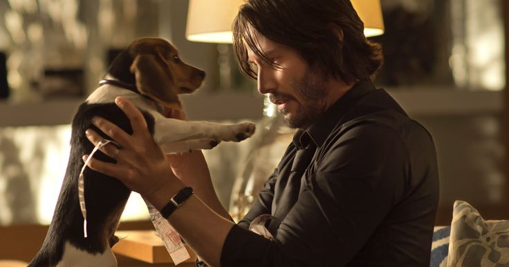 Final 'John Wick' Trailer with Keanu Reeves and Adrianne Palicki -- Keanu Reeves returns to the action genre in the very violent final trailer for 'John Wick', along with a poster and new photos. -- http://www.movieweb.com/john-wick-trailer-poster-photos