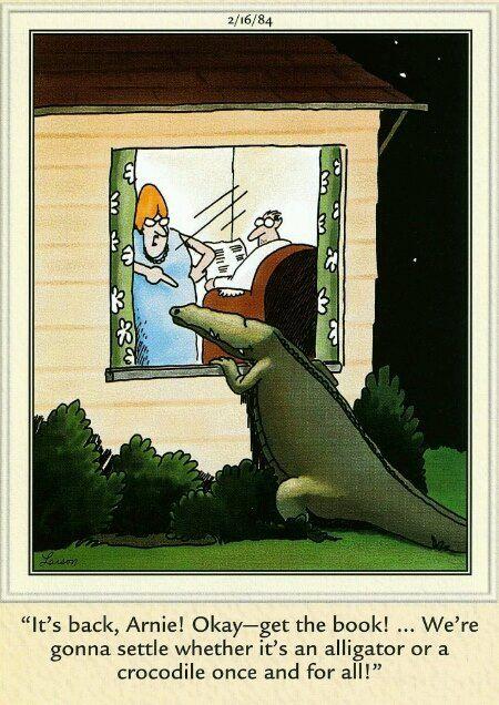 877 best images about far side cartoons on pinterest. Black Bedroom Furniture Sets. Home Design Ideas