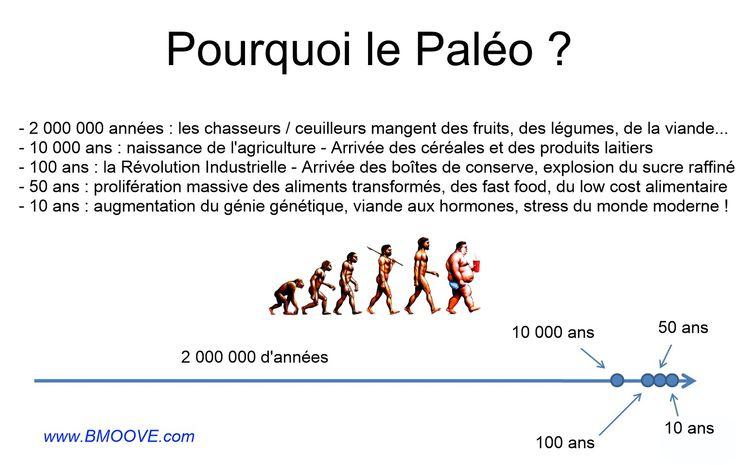 Re-découvrez le régime Paléo, le seul régime alimentaire réellement adapté à l'espèce humaine. Le régime Paléolithique permet de retrouver forme et santé !