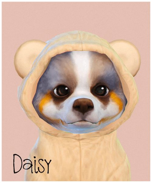 Daisy Puppy for The Sims 4 by Silwermoon