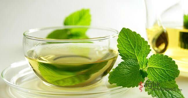 Sindirim sistemini hızlandırıcı etkileri ile nane çayını kilo vermek için kullanabilirsiniz!   Nasıl mı? http://tklf.me/bes-ice  #besleyici #naneçayı #nane #hızlandırıcı