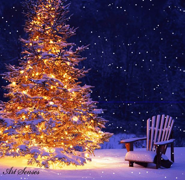 1231 Best WINTER CHRISTMAS Images On Pinterest Winter  - Magic Christmas Tree