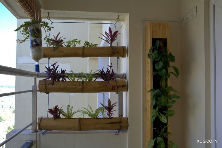 Bamboo Ladder as a privacy screen