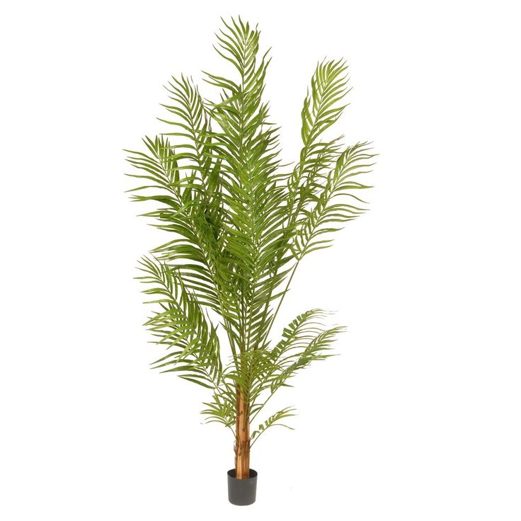 Artificial Potted Areca Palm Tree Green 6 Ft. - National Tree Company