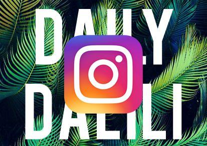 Have you followed Dalili design on Instagram?