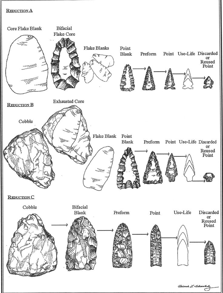 Biface reduction and stages of stone tool manufacturing. University of Minnesota, Dept. of Anthropology.
