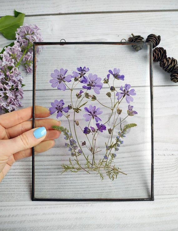 Framed pressed flowers blue decor. Original herbarium. dry flower wall decoration. marked …