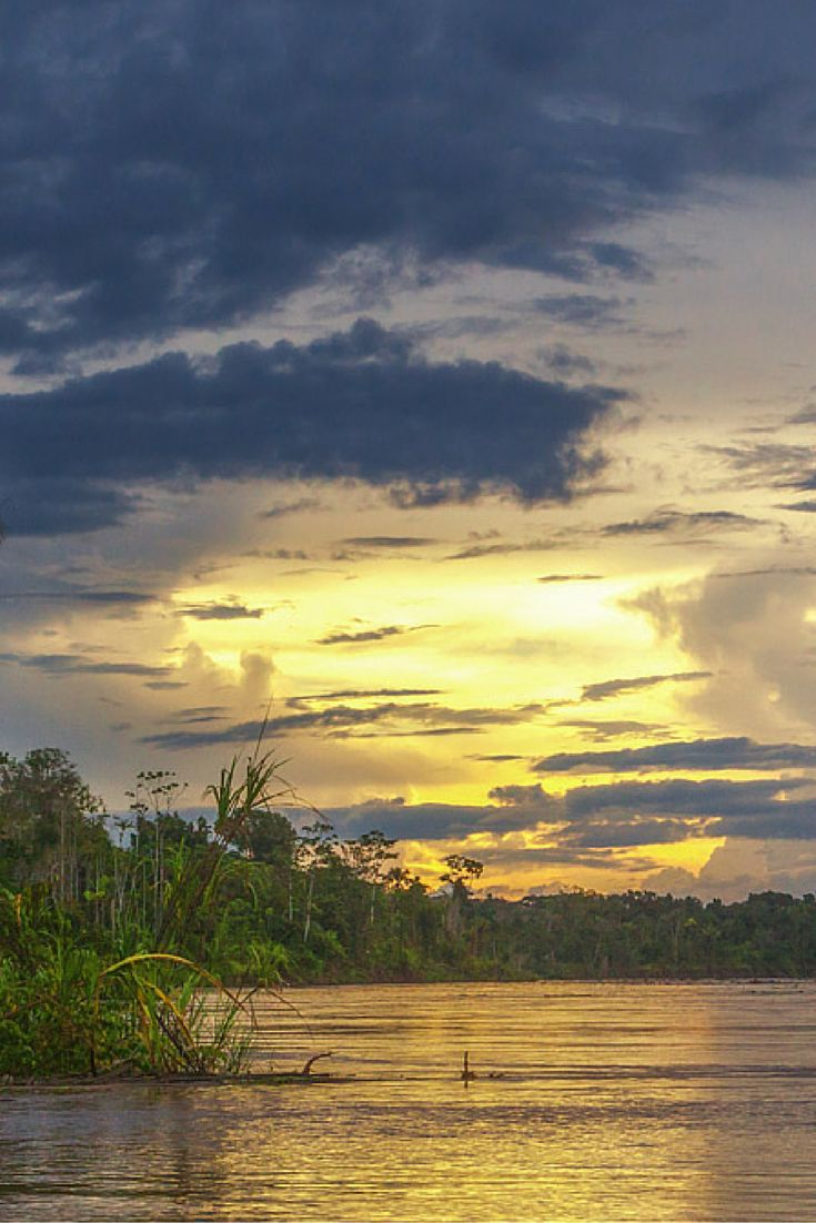 What to Expect on an Amazon River Cruise – Life on the River | The Planet D Adventure Travel Blog | An Amazon River Cruise isn't your typical cruise. We now know having just returned from a Caribbean Cruise. While many other cruises are all about creating entertainment and activities, an Amazon River Cruise is about experiencing life on the world's largest river and exploring the culture, wildlife and beauty of the world's largest rainforest.: