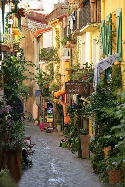 Collioure, Pyrénées Orientales, France