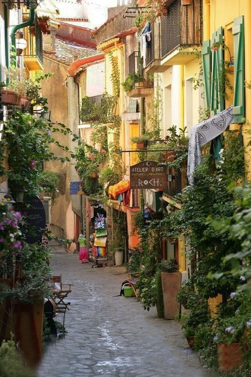 Collioure ~ France A little town like this is where I hope to someday live. :)