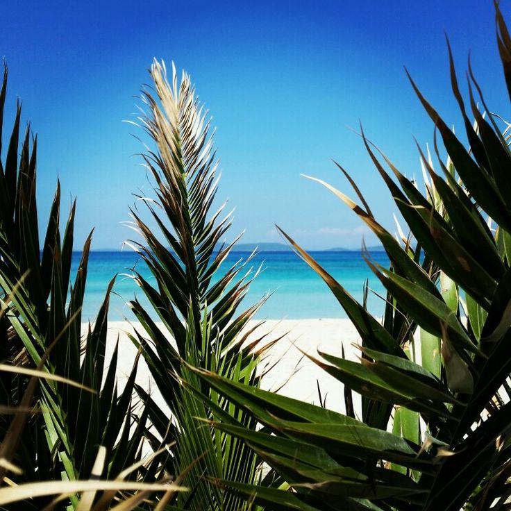 Palmiyeler arasından Ilıca sahili, Çeşme