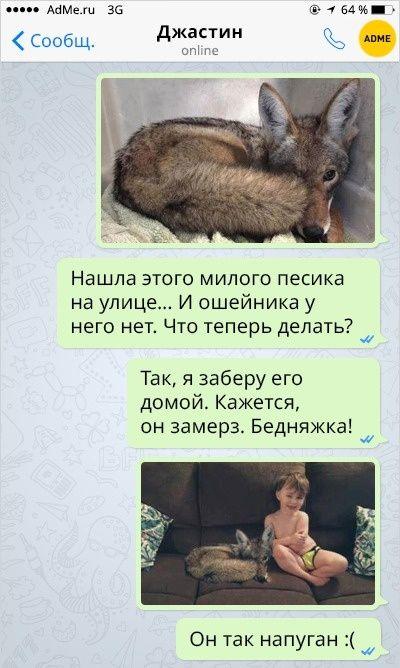 Муж в шоке - он увидел, кого приютила жена!))) » Женский Мир
