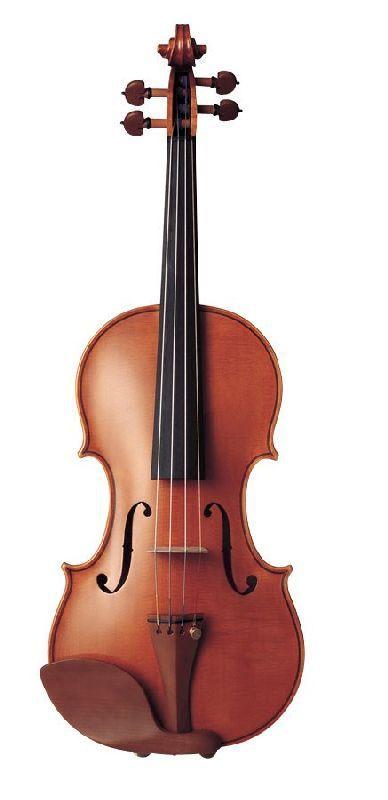 YAMAHA Violon 4/4 yvn200g - Violons acoustiques - Violons entiers 4/4 | Woodbrass.com