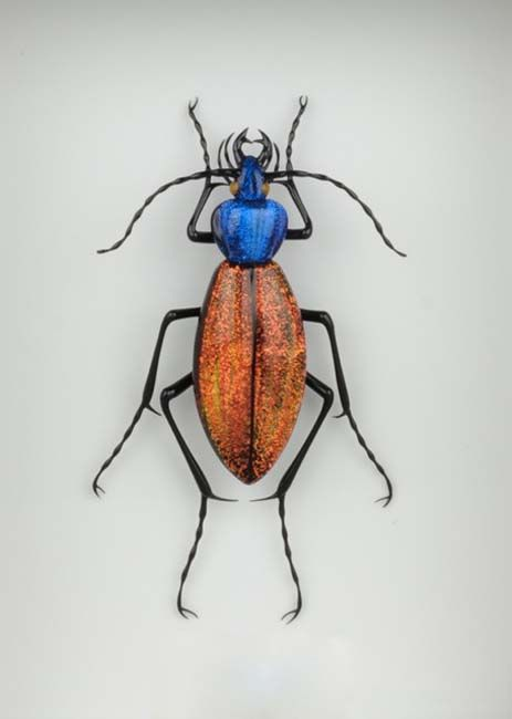 Glass Beetle Orange 650.jpg 463×650 pixelshttp://www.mostlyglass.com/Artists/Toffolo_Emanuel/Toffolo_Emanuel_main_page.htm