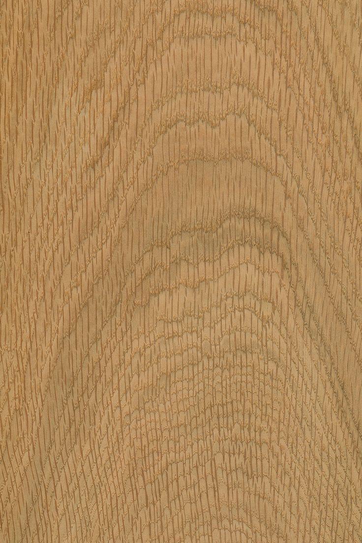 europäische Eiche | Furnier: Holzart, Eiche, Blatt, hell, Spiegel, Laubholz, braun #Holzarten #Furniere #Holz