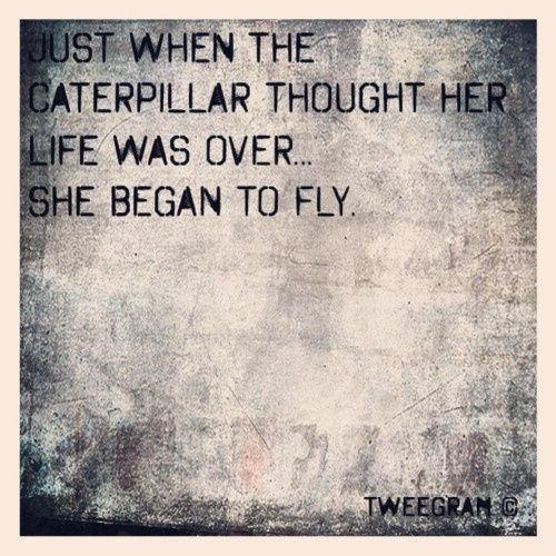If ever i could get a tattoo it would say this with little butterflies around a cherry tree branch.....