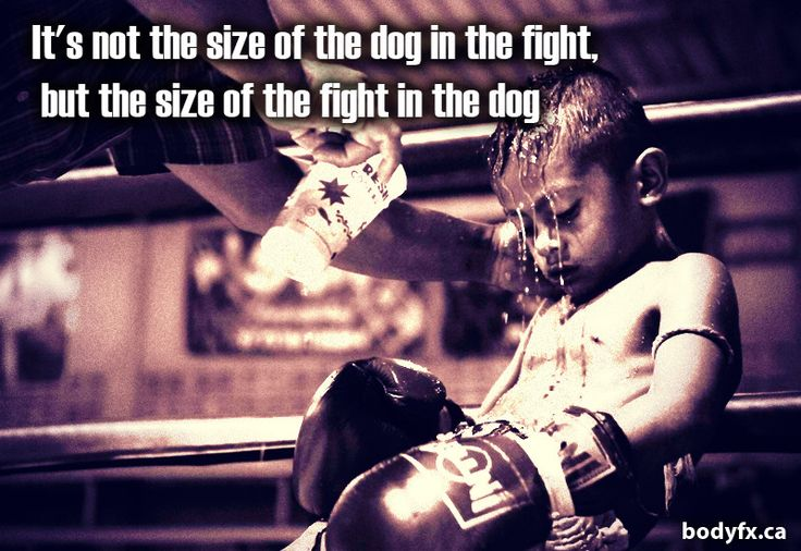Motivation: It's Not The Size Of The Dog In The Fight…