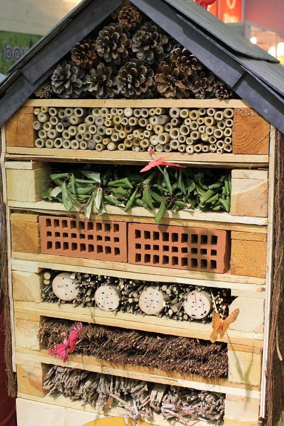 25 best ideas about cas on pinterest no flour recipes - Hotel a insectes ...
