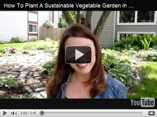 how to build a sustainable ornamental edible vegetable garden design in your front lawn